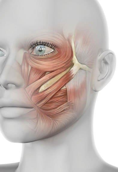 Paralisis facial tratamiento